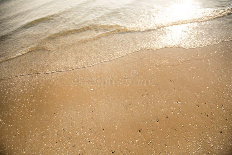 Vågen av det lugna havet på en sandig strand Utrymme f?r text royaltyfria foton