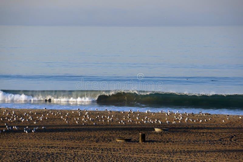 Vågen bryter på kust av stranden i LA royaltyfria foton