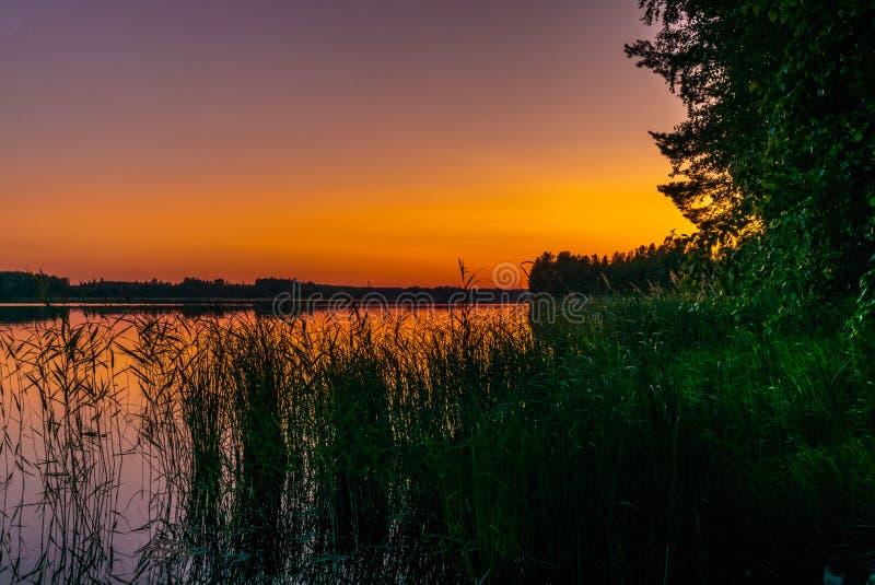 Vågor och rottingar på kusterna av Saimaa sjön i Finland på solnedgången i sommar - 2 royaltyfria foton
