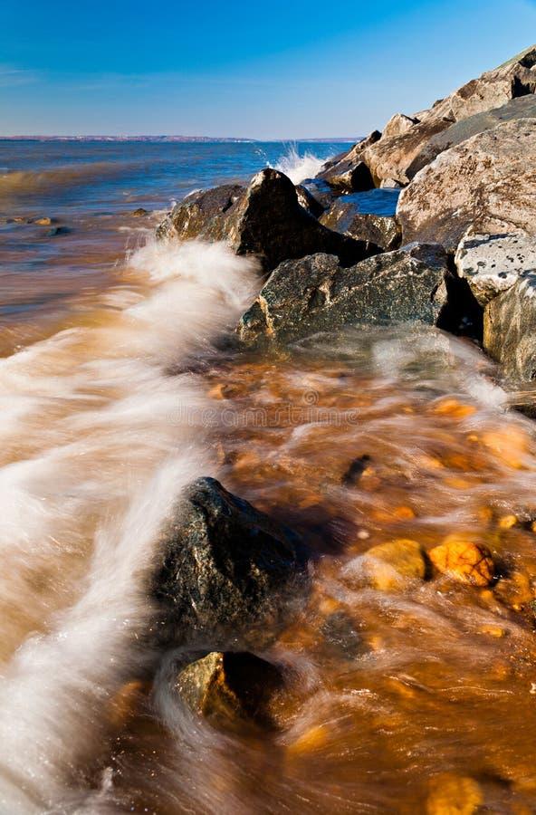 Vågor på Chesapeakefjärden på älghalsdelstatsparken, Maryland. arkivbilder