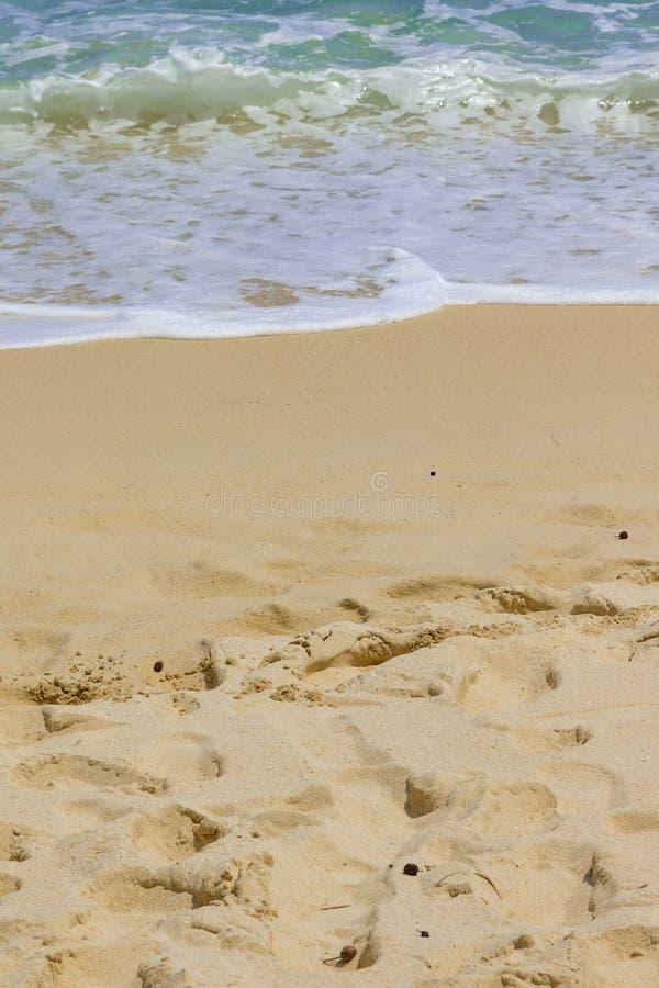 Vågor på en vit sandstrand på Mahe Island, Seychellerna fotografering för bildbyråer