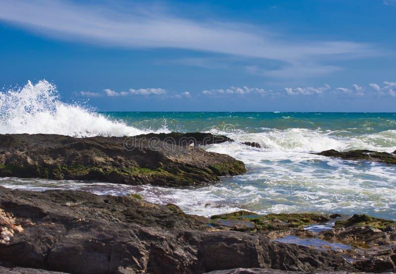 Vågor på stranden av ett mediateraneahav arkivfoton