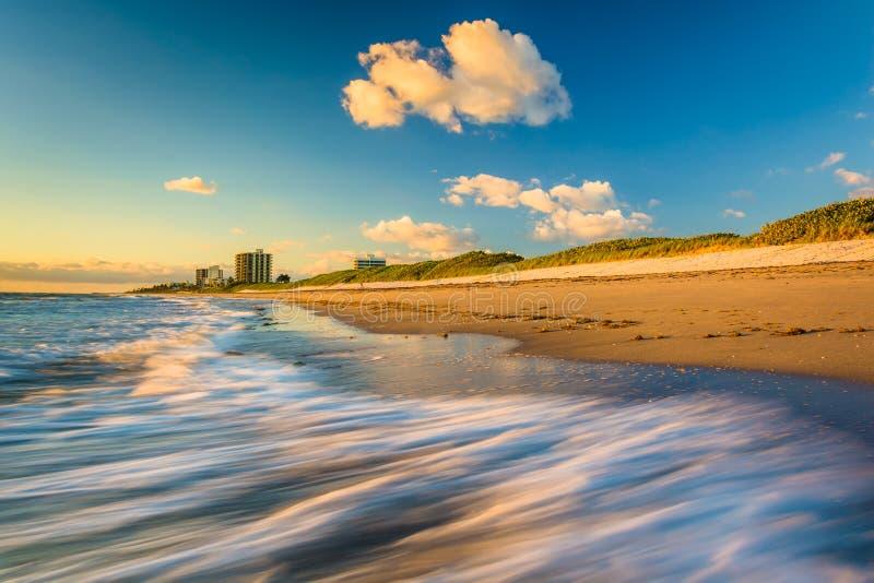 Vågor på stranden på Coral Cove Park på soluppgång, Jupiter Island royaltyfri bild