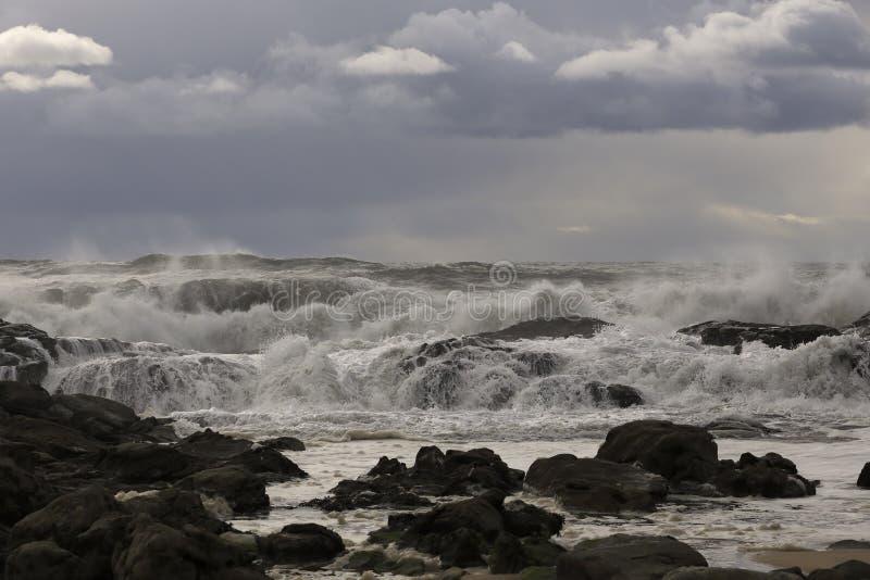 Vågor som att närma sig kusten royaltyfria foton