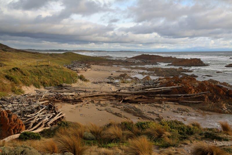 Vågor som dunkar det färgrika havet, vaggar på skymning, i avlägset Arthur Pieman Conservation område, den Tasmanien västkusten royaltyfria foton