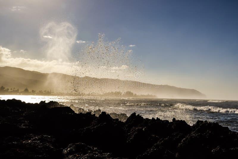Vågor som plaskar på, vaggar nära Haleiwa - den norr kusten Oahu arkivfoton