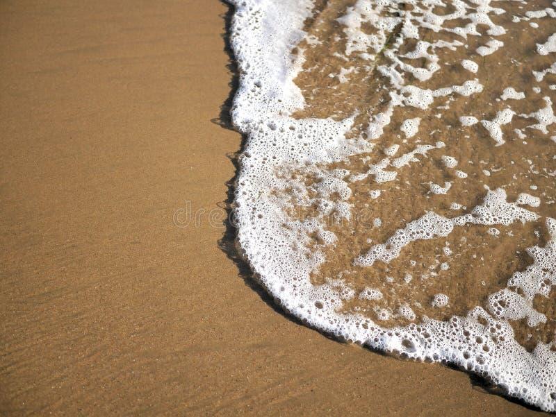 Vågor som sveper mot sand på skumet för Kalifornien kusthav och sandiga stränder i sommarsolljus för loppbloggar, websitebaner arkivfoto