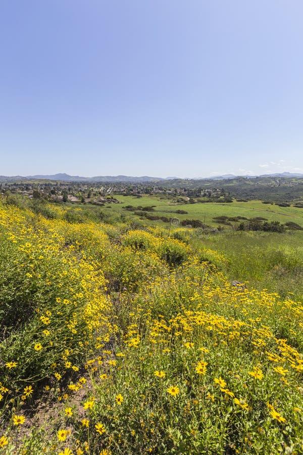 Våräng i Thousand Oaks Kalifornien royaltyfria foton