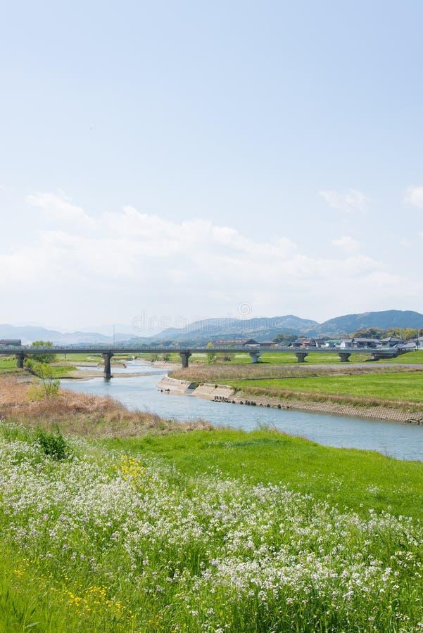 Våräng och flod arkivbild