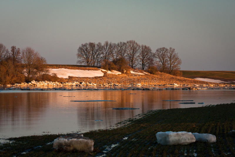 Våröversvämning i den Lielupe floden royaltyfri foto