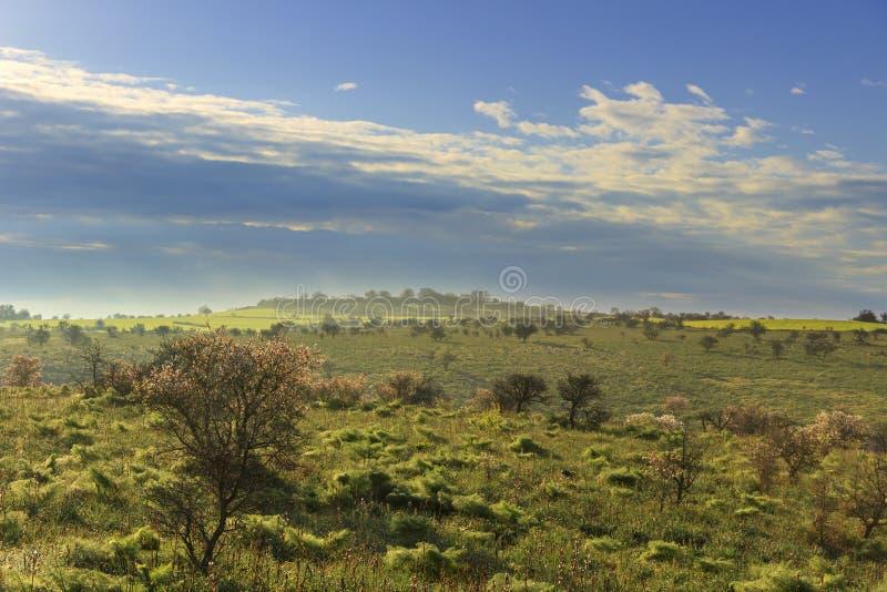 Vår Alta Murgia National Park: kullar som döljas i mist i morgonen Apulia-ITALIEN royaltyfria foton