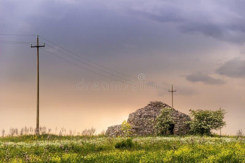 Vår Apulia bygd: typisk lantligt landskap med trullo italy arkivfoto