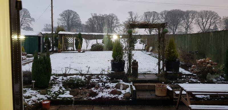 Vår familjträdgård i vinter arkivfoton