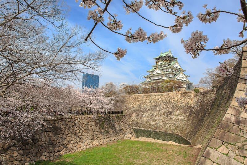 Vår i den Osaka slotten royaltyfri bild