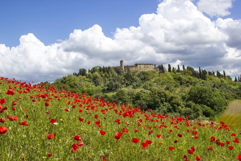 Vår i Tuscany royaltyfria foton