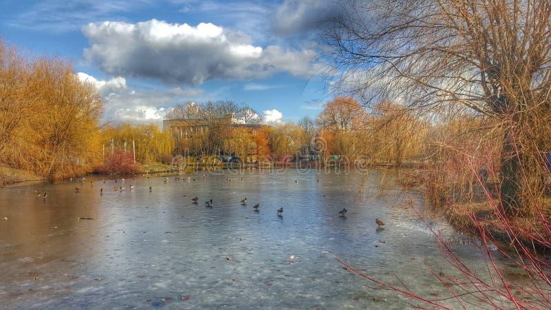Vår i vinter arkivfoto