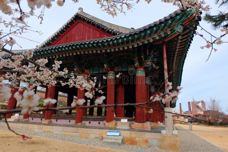 Vår i Yeosu royaltyfria foton