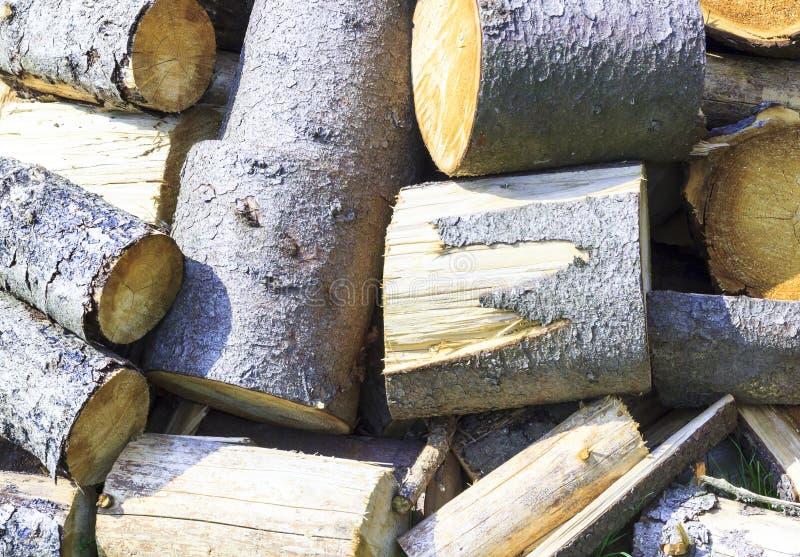 Vår solig ljus dag Förbereda skogen för senare bruk Uppvärmning av huset arkivfoto