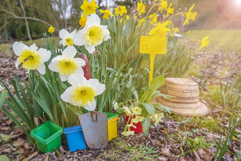 Vår som arbeta i trädgården begrepp arkivfoton