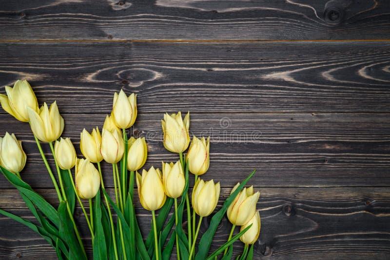 Vårbakgrund med gruppen av tulpanblommor, kopieringsutrymme royaltyfria bilder