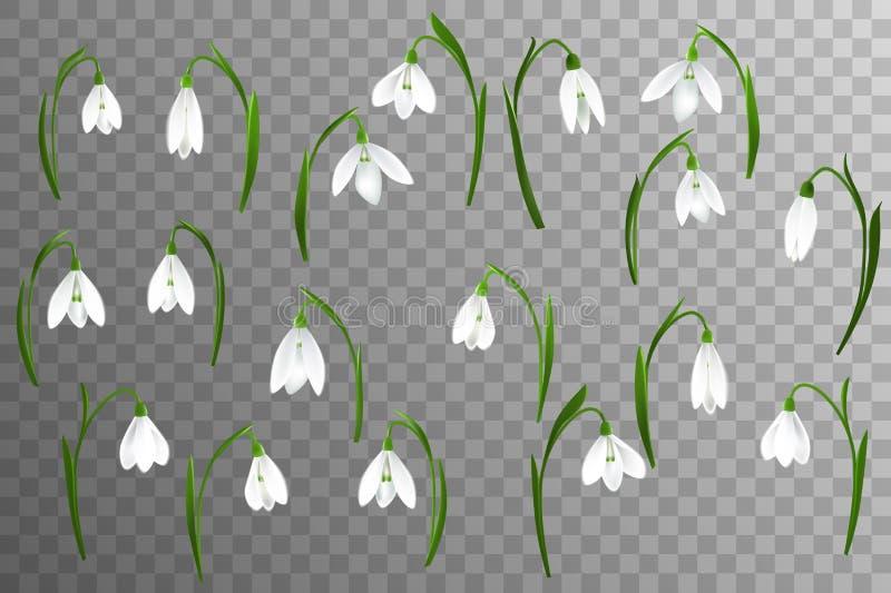 Vårbakgrund med snödroppe blommar, grönt gräs, svalor och blå himmel stock illustrationer