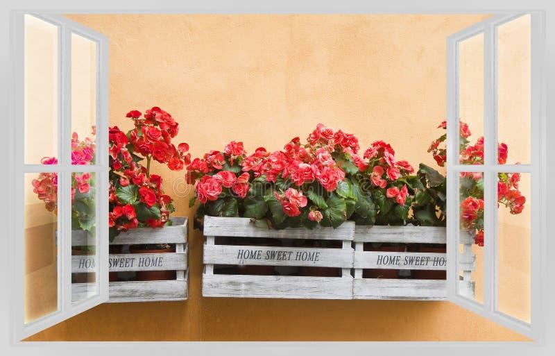 Vårbegrepp med blommaaskar som hänger på väggsikten f royaltyfri fotografi