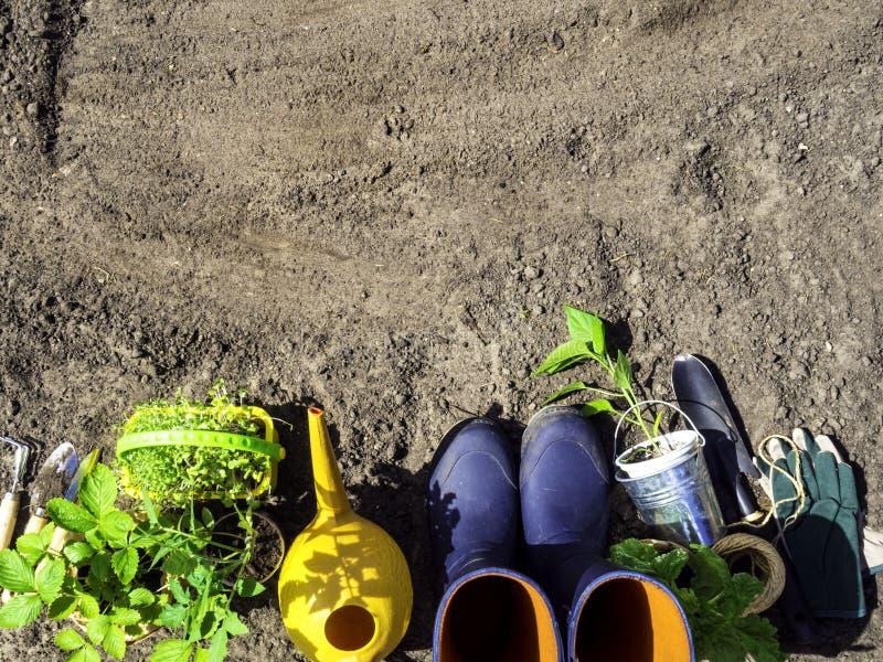 vårbegreppet som arbeta i trädgården hjälpmedel för att arbeta i trädgården, gummistöveler och plantor som bevattnar kan, säsongs arkivfoto