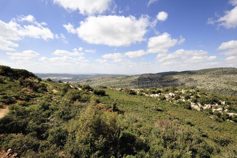 Vårberglandskap, Israel royaltyfri fotografi