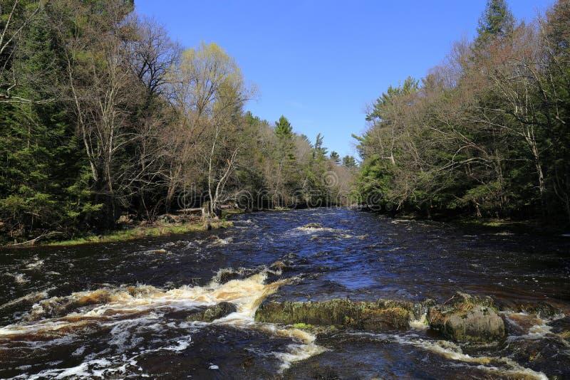 Vårbild av floden för Eau Claire Dells royaltyfri foto