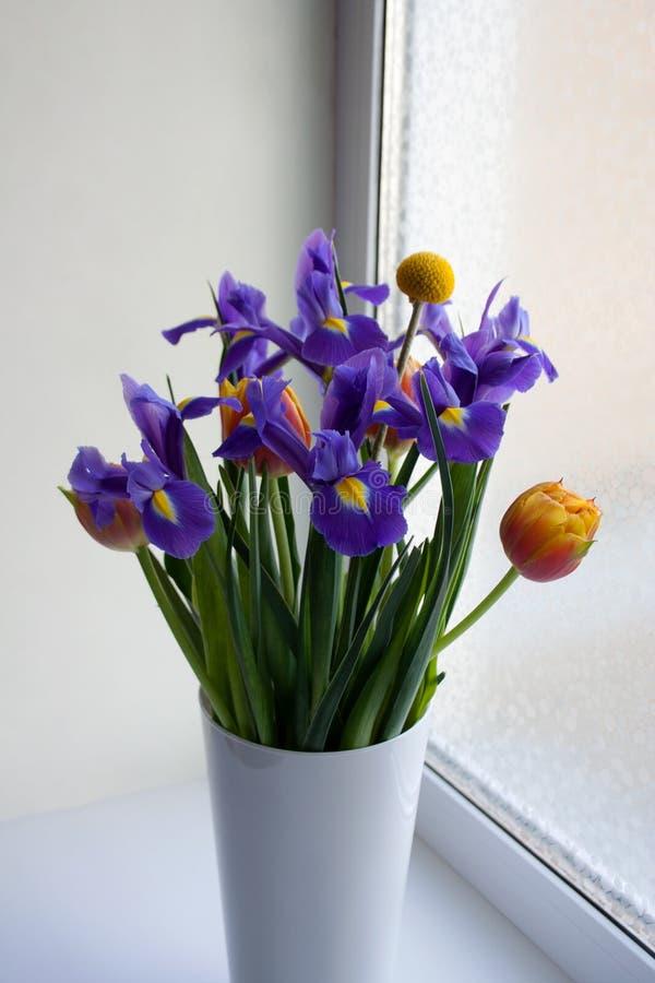 Vårblommabukett i den vita vasen för exponeringsglas royaltyfri fotografi