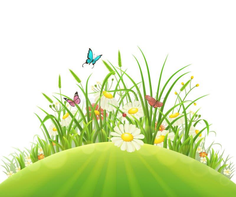 Vårblommor och gräs royaltyfri illustrationer