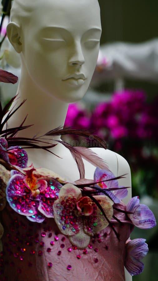 Vårblommor: orkidéhaute couture royaltyfria bilder