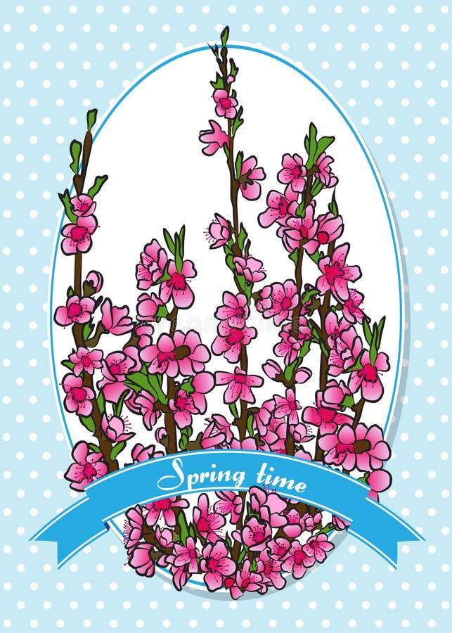 Vårblomningar på persikan förgrena sig i etikett Rosa blommor royaltyfri illustrationer