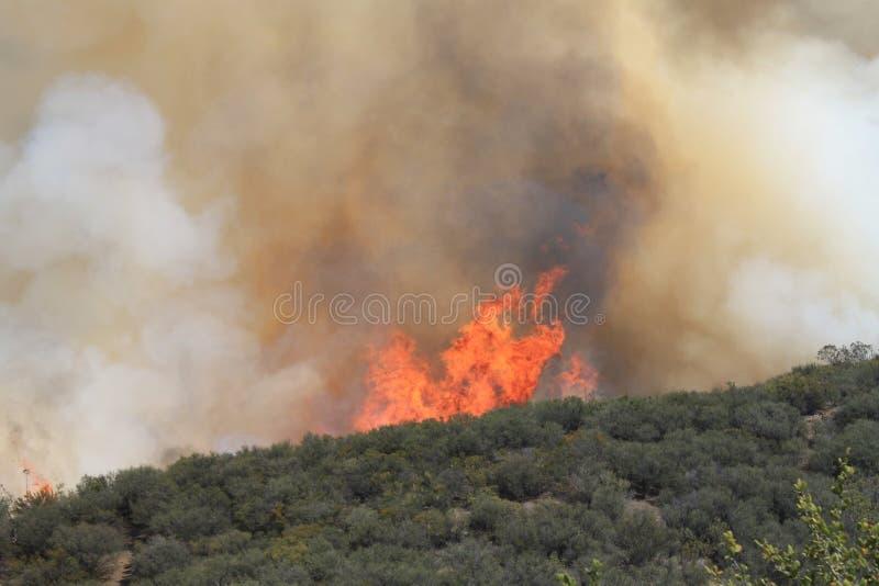 Vårbrand ~ 2013 ~ den annalkande kulleöverkanten #6 för brand royaltyfria bilder