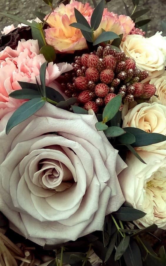 Vårbukett av blandade färgrika blommor Blommabuketten inklusive Ozothamnus, steg Menta, vita rosor, rosa nejlika arkivfoton