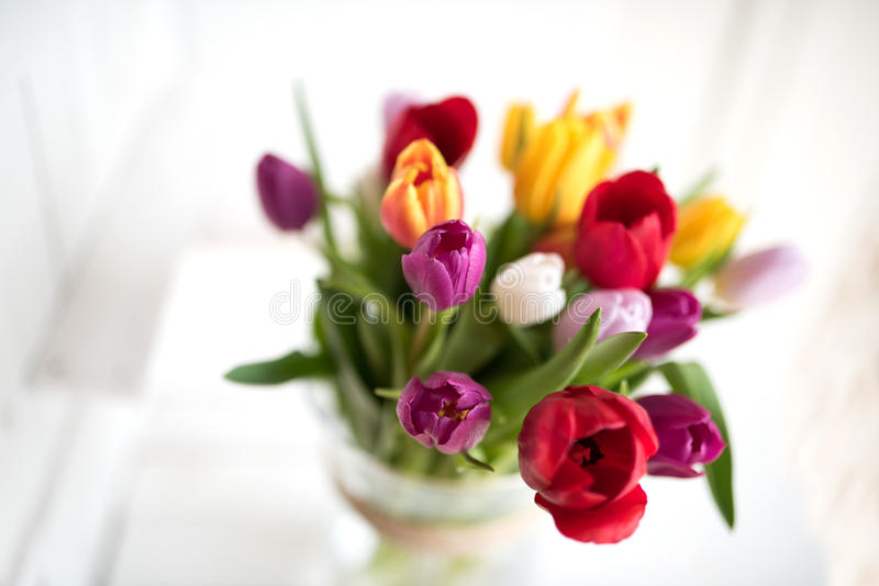 Vårbukett med färgrika tulpan arkivbilder