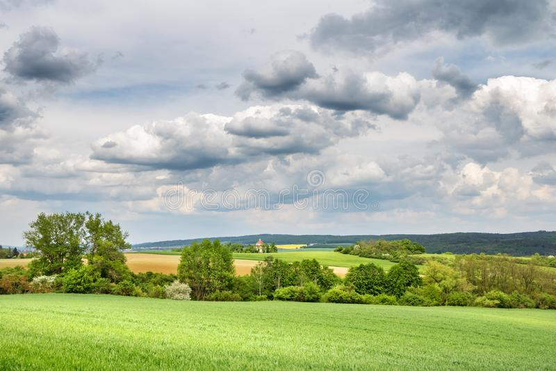 Vårbygd med det gröna fältet och träd under molnig himmel arkivfoton