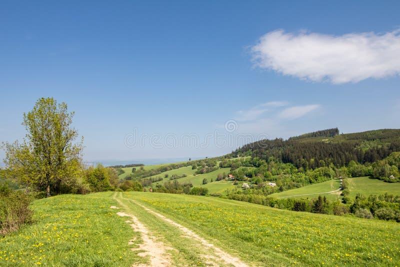 Vårbygd med grusvägen till och med gröna ängar royaltyfri foto