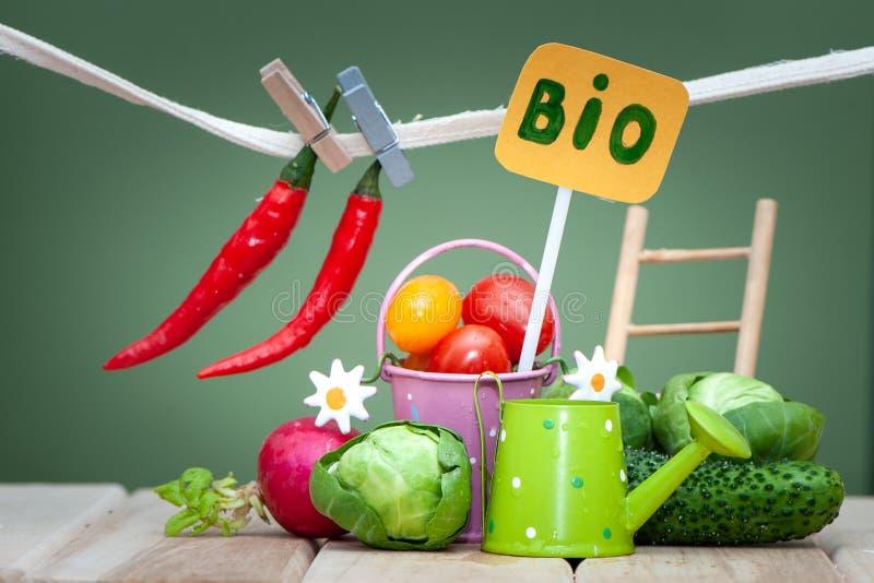 Vård- bio begrepp för organisk mat Stilfull sammansättning av liten frukter och grönsaker och trädgård fotografering för bildbyråer