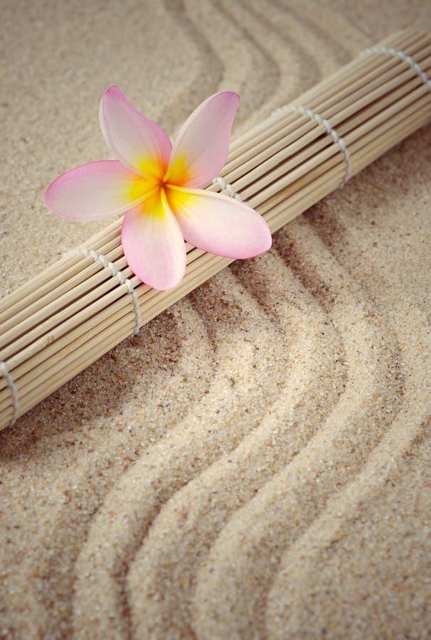 Vård- brunnsortinställning med matt bambu och frangipaniblomman royaltyfria foton