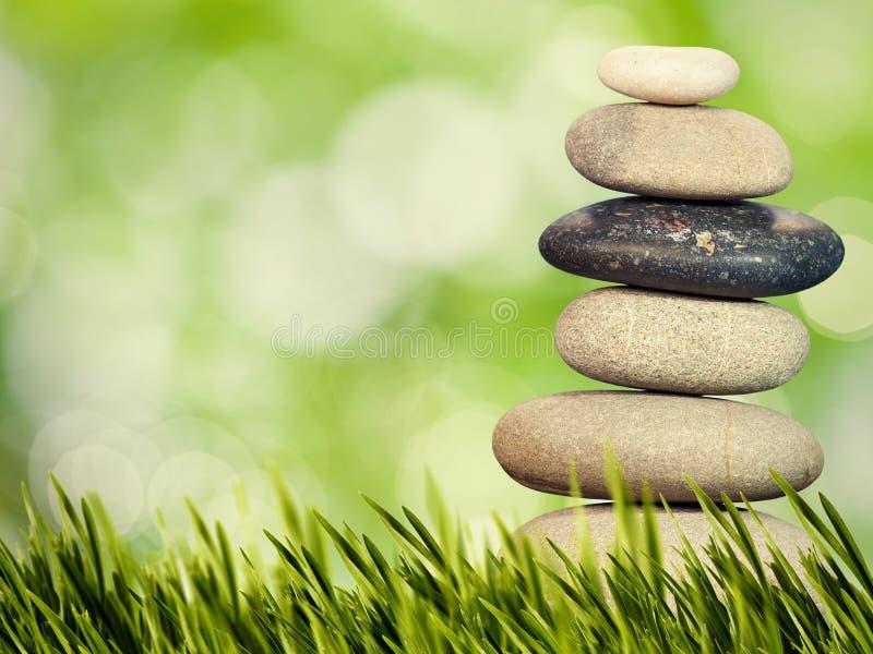Vård- och naturlig harmonibegrepp för Wellness, royaltyfria bilder