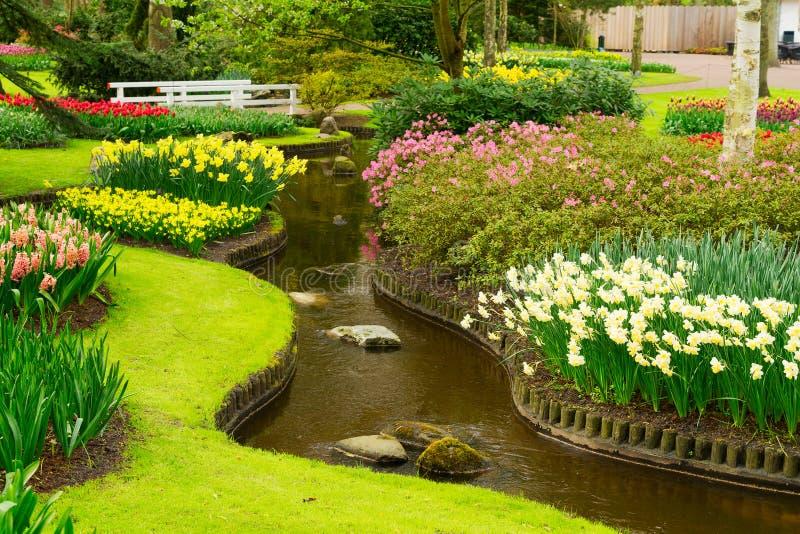 Vårdamm i trädgård royaltyfria foton