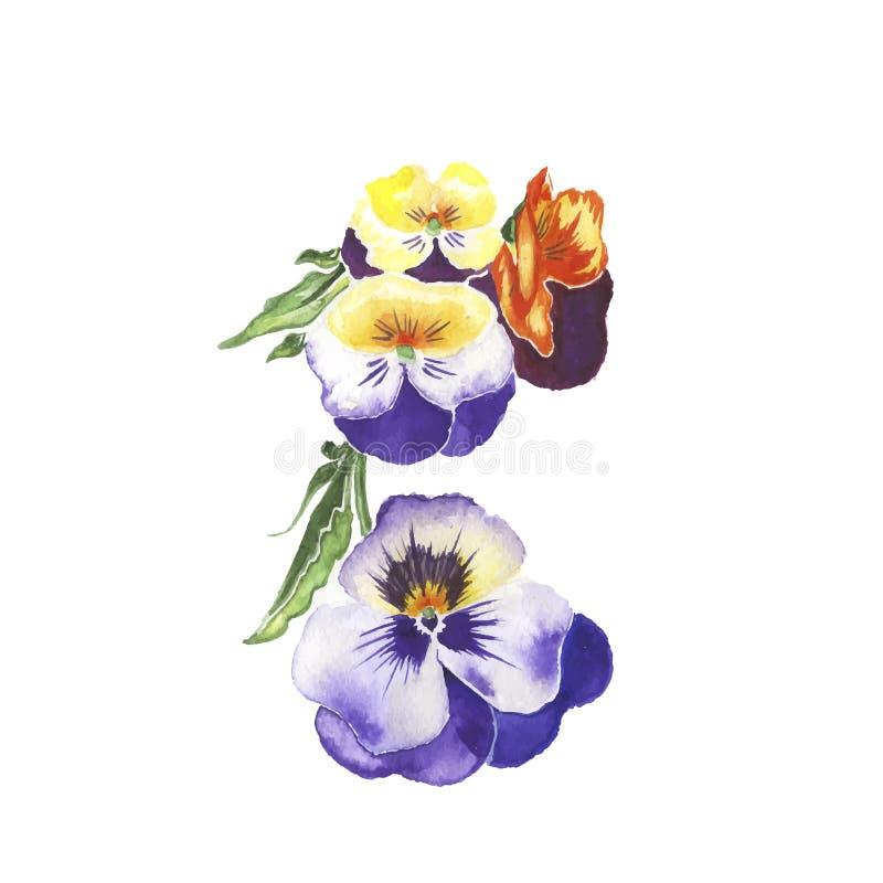 Våren blommar den isolerade vattenfärgen royaltyfri illustrationer