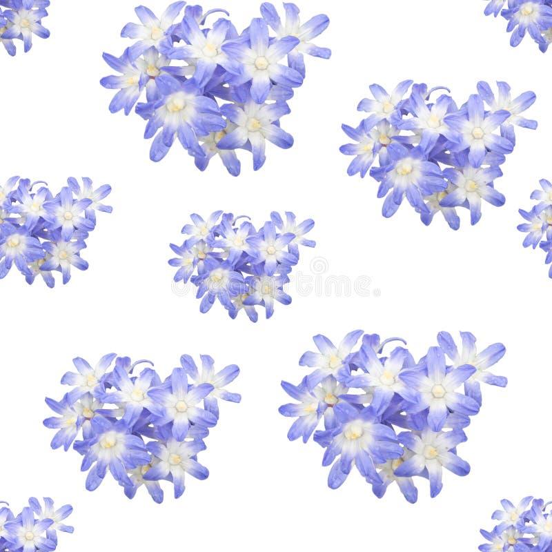 Våren blommar den sömlösa bakgrundsmodellen royaltyfri illustrationer