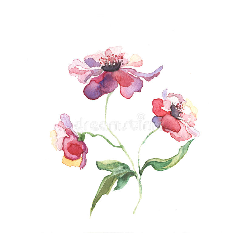 Våren blommar målningvattenfärgen stock illustrationer