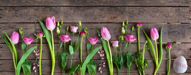 Våren blommar med det easter ägget arkivbild