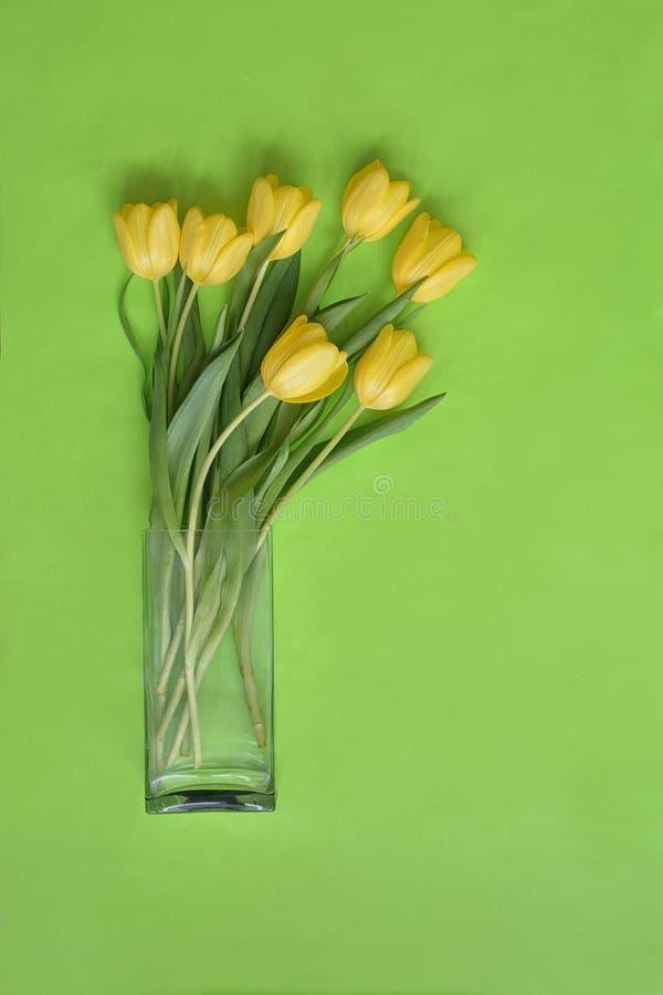 Våren blommar på den gröna svart tavla fotografering för bildbyråer