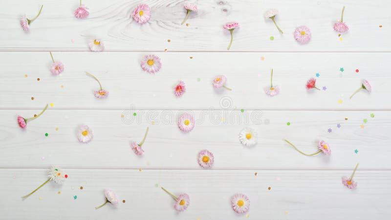 Våren blommar sammansättning för vykort Röd, gul vit marg royaltyfri fotografi