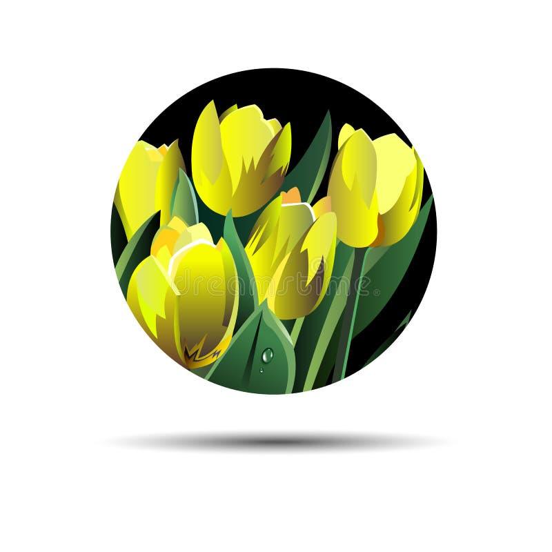 Våren blommar vektorer, natur för vår för flora för vektortulpan blom- vektor illustrationer