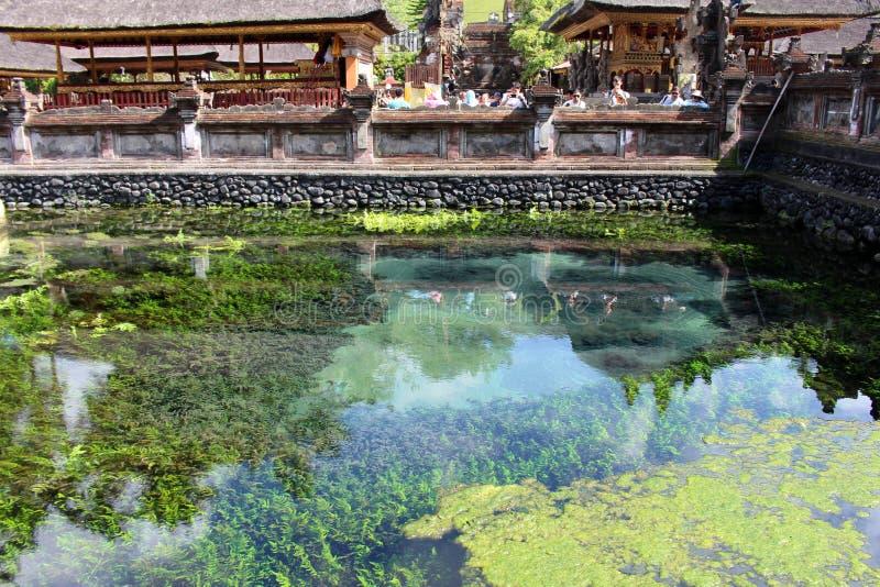 Våren för heligt vatten runt om compl för Pura Tirta Empul vattentempel royaltyfri bild